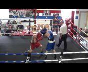 bg boxing videos